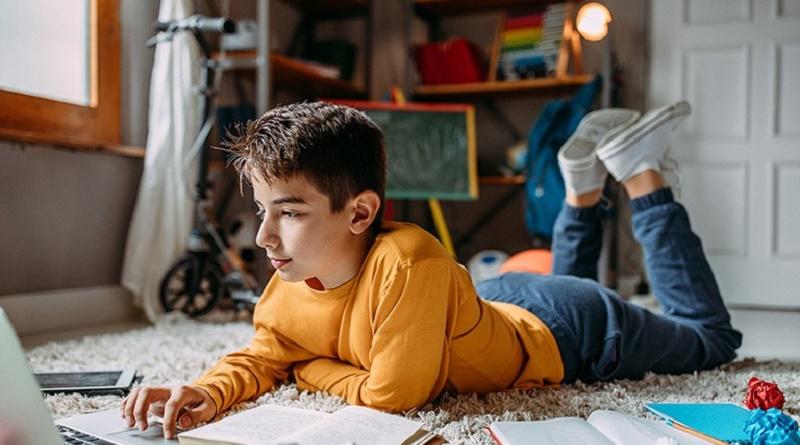 Niño navegando internet