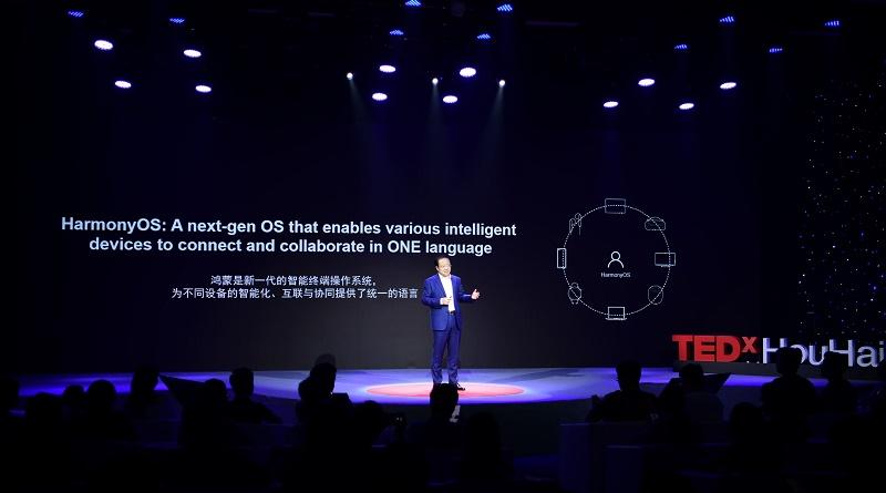 Wang Chenglu_TEDx_3